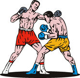 Boxer punching a knockout. Vector art on the sport of boxing isolated on white background Stock Image