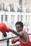 Boxer Punching Punchball Outdoors Royalty Free Stock Images