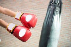 Boxer is punching a sandbag Royalty Free Stock Image