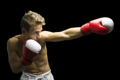 Boxer punching Stock Photography