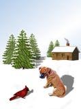 Boxer Pup and Cardinal Royalty Free Stock Photos