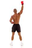 Boxer raising his arms Stock Photo