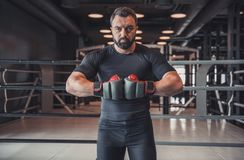 Boxer ready to fight royalty free stock photo