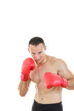 Boxer ready to fight with boxing gloves in a combat stance Stock Images
