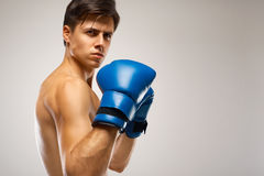 Boxer ready to fight. Boxing, power and strength, champion Royalty Free Stock Photography