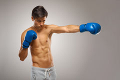 Boxer ready to fight. Boxing, power and strength, champion Stock Photography