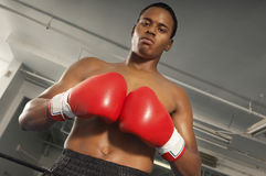 Boxer With Red Boxing Gloves In Gym Royalty Free Stock Photos