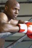 Boxer In Red Boxing Gloves Resting In Ring Stock Images