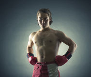 Boxer with red gloves Royalty Free Stock Photography