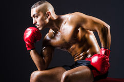Boxer with red gloves Stock Photos