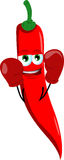 Boxer red hot chili pepper Royalty Free Stock Photo