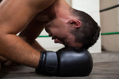 Boxer relaxing in the boxing ring Royalty Free Stock Image