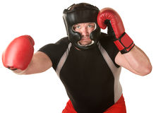 Boxer with Right Hook Stock Photography