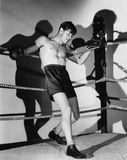 Boxer in ring stock images