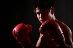 Boxer Series. Photo Series of young asian boxer getting ready and steping into the ring stock photos