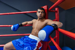 Boxer sitting in boxing ring. Male boxer sitting in the corner of the boxing ring Royalty Free Stock Photos