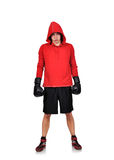 Boxer standing Royalty Free Stock Photo