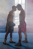 Boxer standing face to face in boxing ring Stock Photos