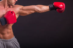 Boxer. Strong boxer on a black background. Brawny guy in boxing gloves Royalty Free Stock Images