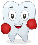 Boxer Tooth Character with Boxing Gloves Royalty Free Stock Photo