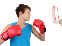 Boxer training Royalty Free Stock Photo
