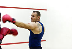 Boxer training Royalty Free Stock Photography