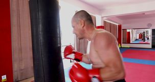 Boxer training with bag. In gym stock footage