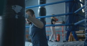 Boxer training with bag in gym. Focused bearded man punching boxing bag training techniques of martial art in gym stock video