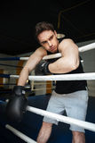 Boxer training in a boxing ring. Looking aside. Royalty Free Stock Photography