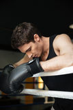 Boxer training in a boxing ring. Looking aside. Stock Photo