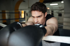 Boxer training in a boxing ring. Looking aside. Royalty Free Stock Images