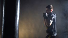 Boxer training in the gym. On a dark background stock footage