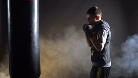 Boxer training in the gym. On a dark background stock video
