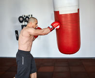 Boxer training in a gym Royalty Free Stock Images