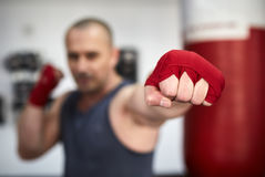 Boxer training in a gym. Boxer training with punch bags in a gym Stock Image