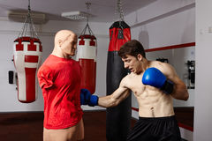Boxer training in the gym Royalty Free Stock Photos