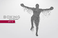 Boxer from triangles. Background and text on a separate layer, color can be changed in one click Royalty Free Stock Photos