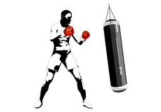 Boxer. Vector illustration of boxer. Solid fill only. No gradients, gradient mesh Royalty Free Stock Photos