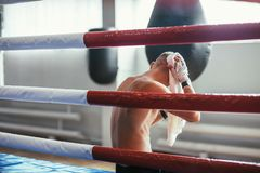Boxer wiping the sweat after hard fight. Boxer wiping the sweat with towel after hard fight sitting in boxing ring royalty free stock photos