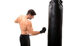 Boxer workout Stock Image