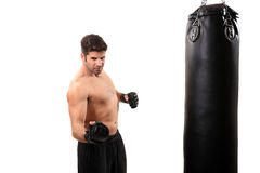 Boxer workout Stock Images