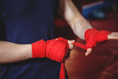 Boxer wrapping boxing strap Stock Image