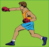 BOXER YOUNG MAN. Color image of a boxer with gloves on a green background Royalty Free Stock Photos