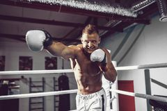 boxer Zekere jonge bokser op de boksring royalty-vrije stock foto