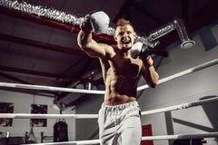 boxer Zekere jonge bokser op de boksring stock foto
