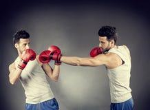 Boxerabgleichung stockbild