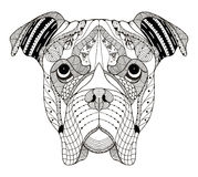Boxerhundekopf zentangle stilisierte, vector, die Illustration, freehan Lizenzfreie Stockbilder
