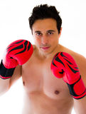 Boxermann Stockbild