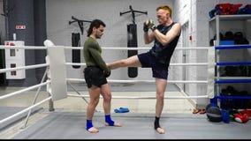 Boxermann, der zusammen Sporttrainer der Aufwärmenübung im Turnhallenclub tut Persönlicher Trainertraining kickboxer Mann im Kamp stock video