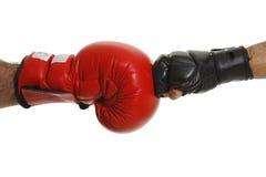Boxers Royalty Free Stock Photos